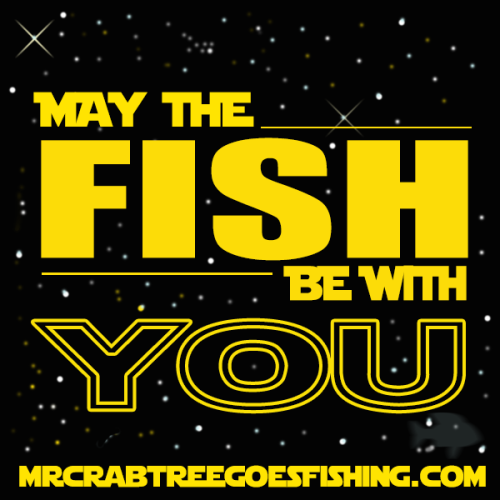 May the fish be with you mr crabtree goes fishing for Fish therapy near me